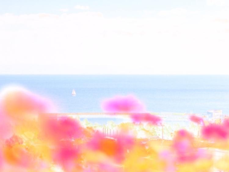 02.ウォーターカラー_Water1_Natural_AWB.jpg