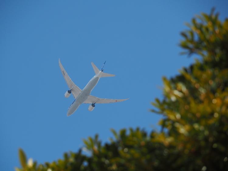 03_飛行機の作例.JPG
