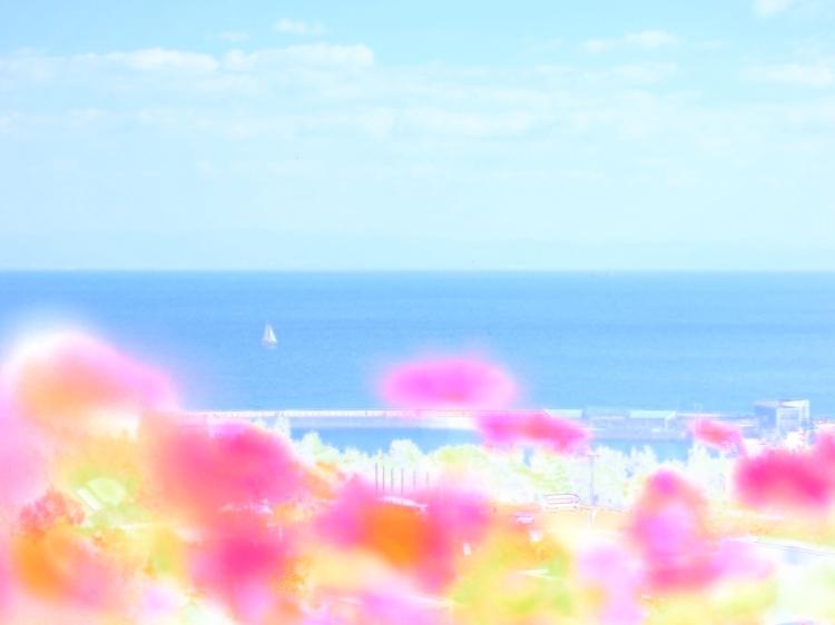 04.ウォーターカラー_Water1_Vivid.jpg
