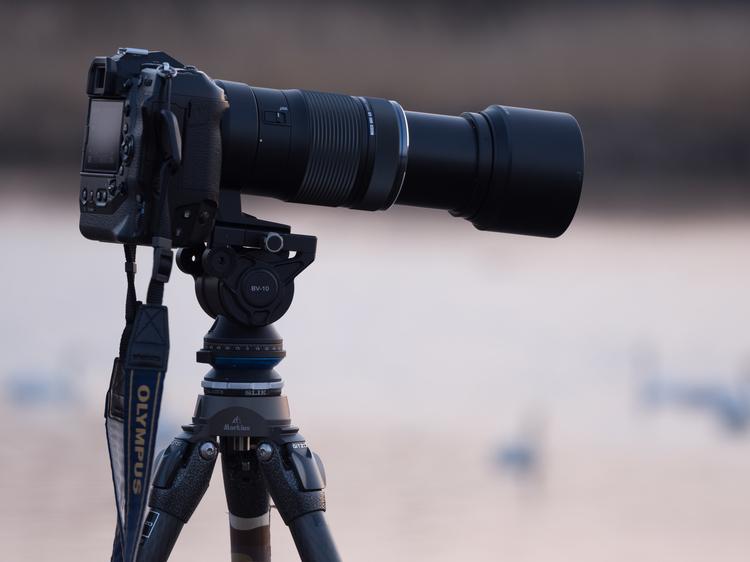 はじめての野鳥撮影方法とコツ・テクニック機材