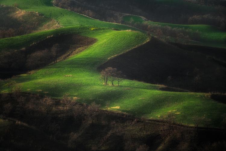 05_丘の中腹を望遠レンズで撮影した作例.jpg