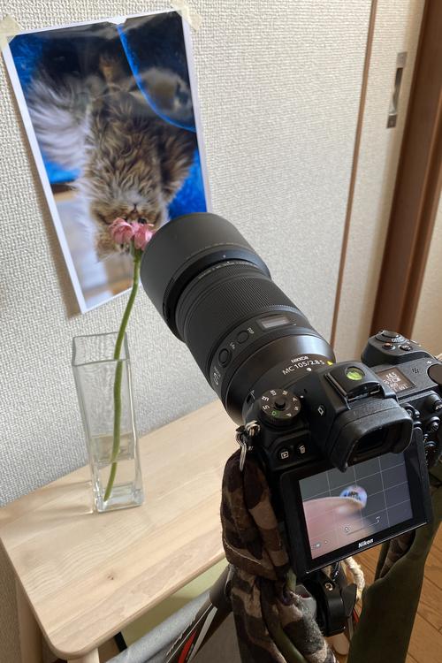 07_撮影風景.jpg
