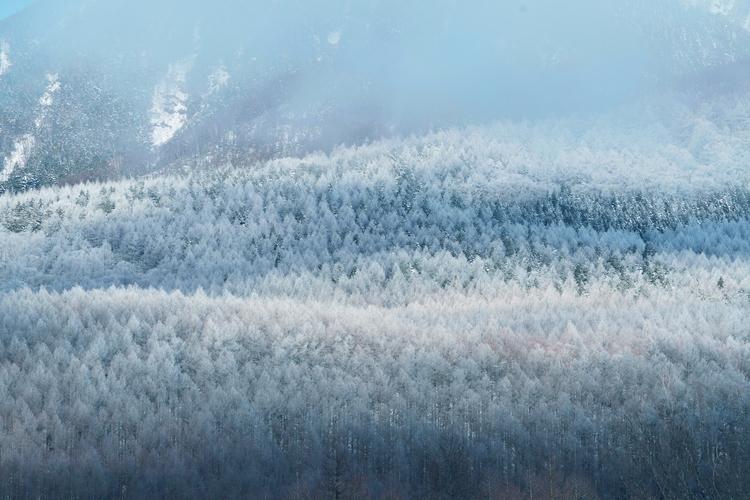 10_雪景色の画像.JPG