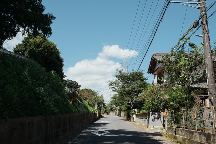 13_コハラタケル__撮影写真.jpg
