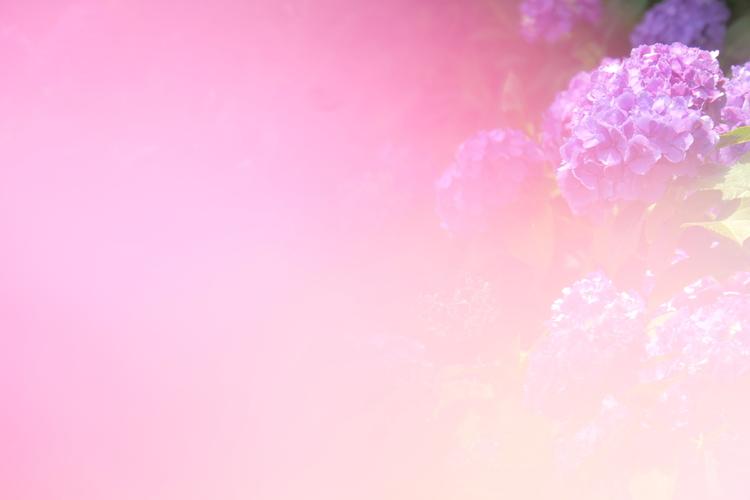 14_ライカC-LUXで撮影した作例.JPG