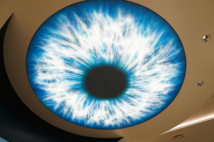 網膜をデザインした天井の画像