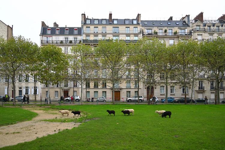 パリの風景_3.jpg