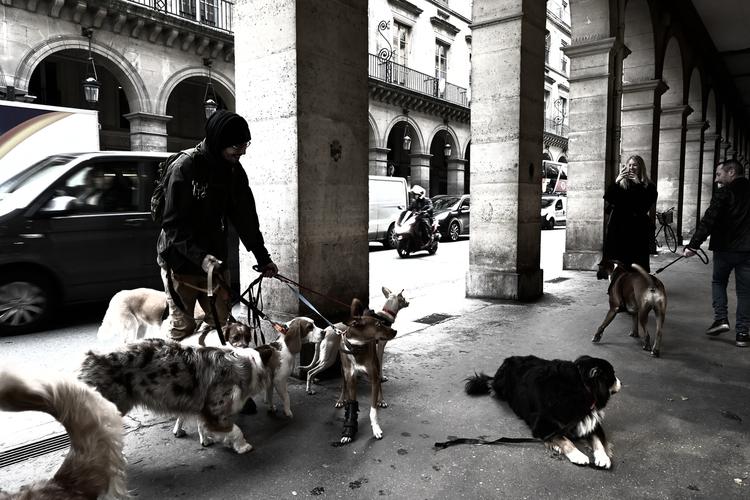 パリの風景_8.jpg