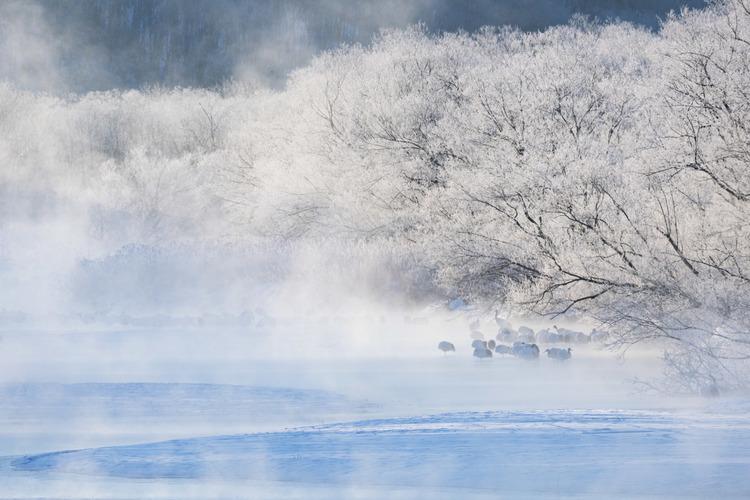 北海道での撮影写真1.jpg