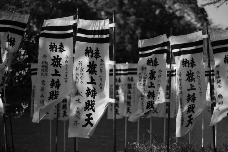 旗を撮影した写真.JPG