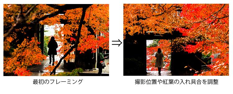 紅葉撮影比較画像
