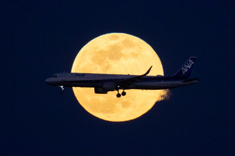 航空機の写真_A50_008.jpg