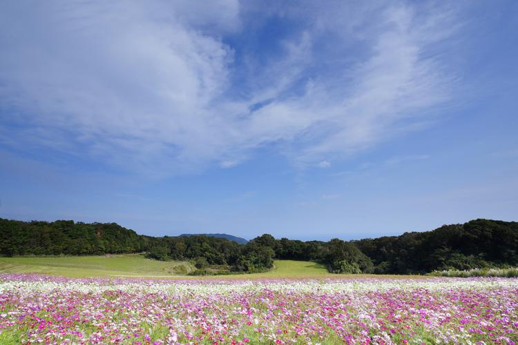風景_15.JPG