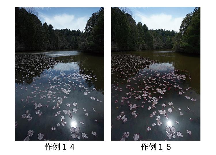 sakurei_14-15.jpg